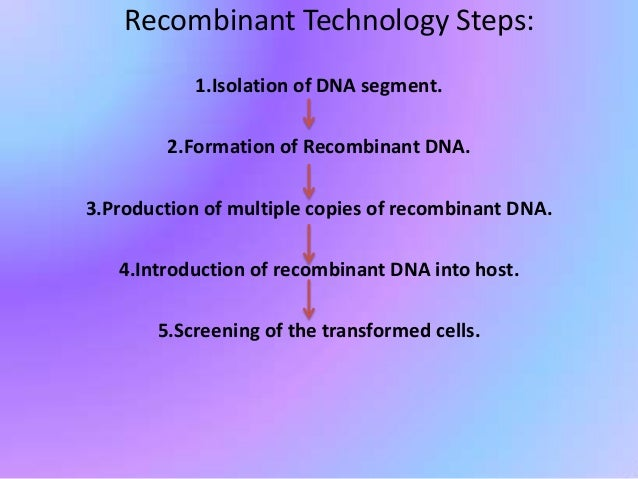 what is an example of recombinant dna being used