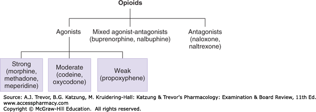 an example of a narcotic analgesic is ________
