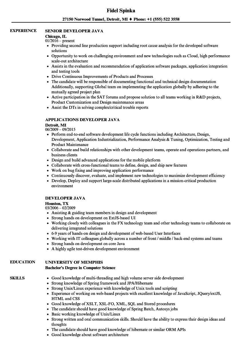of java developer resume competitive example